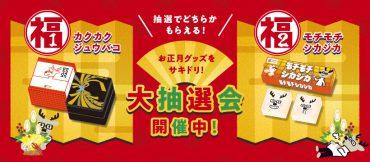 sakidori_present